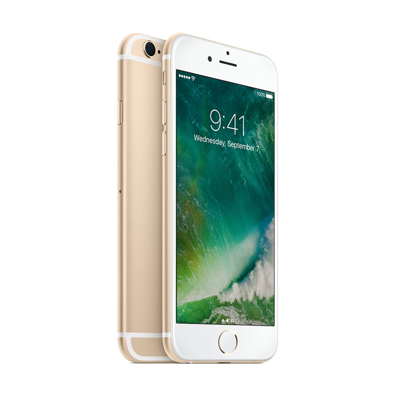 iphone6s_gold_dracocase_1.jpg